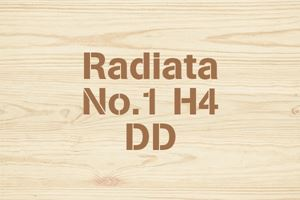 Radiata No.1 H4 DD