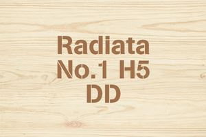 Radiata No.1 H5 DD