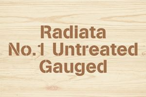 Radiata No.1 Untreated Gauged