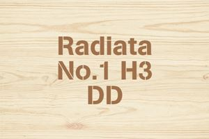 Radiata No.1 H3 DD