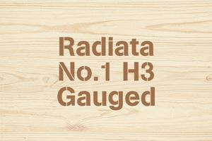 Radiata No.1 H3 Gauged