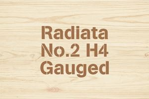 Radiata No.2 H4 Gauged